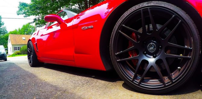 How to: removal and install of blacked out z06 badges