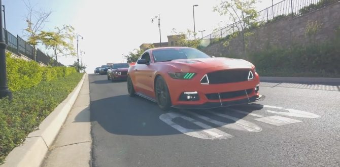 Bad Ass Line Up of Mustangs @ Cars and Coffee Folsom