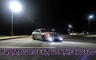 Mustang Terminator Cobra vs The World