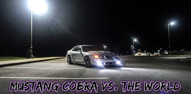 Mustang Terminator Cobra vs The World