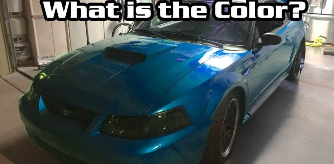 Mustang Week Prep: Wrap Almost done and The Terminator is Ready