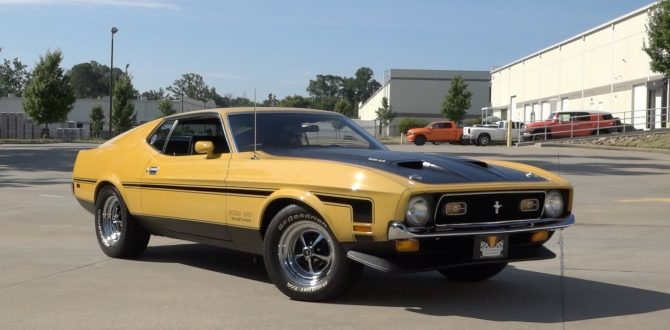 135932 / 1971 Ford Mustang Boss 351