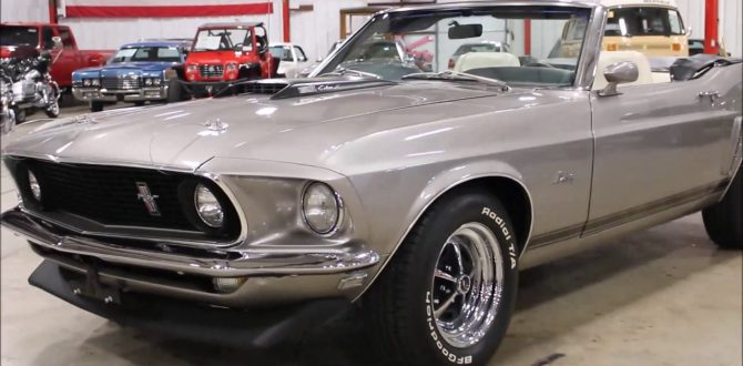 1969 Ford Mustang silver