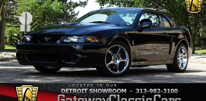 2003 Ford Mustang Cobra SVT Stock # 939-DET
