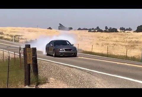 2003 Mustang Cobra Terminator Whipple +700rwhp Burnout