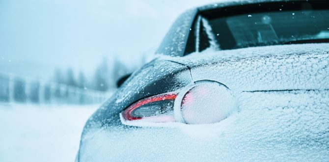A Sports Car for All Seasons
