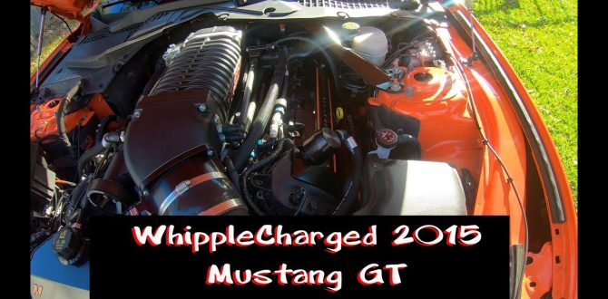 My Whipple Charged 2015 Mustang GT - 700+ HP