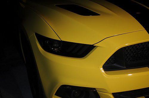 Robert Mustang 5