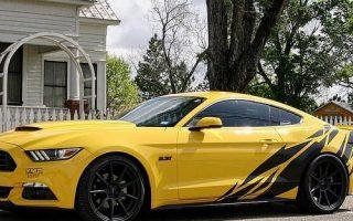 regram @badass_mustangs Owner: @my_yellow_stang! Photo by: @