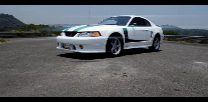 Mustang Shelby 2000