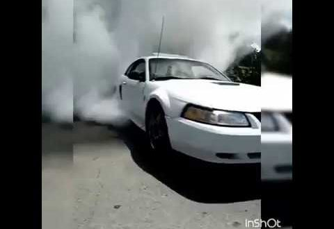MUSTANG TOUR PARRAS BURNOUT