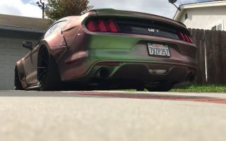 Cold Mustang GT Clears Throat || Fully Wrapped Holographic FORD MUSTANG GT START UP ||